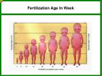 fertilization age in week1