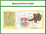 meaning of word alaqa