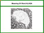 meaning of word alaqa4