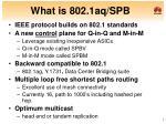 what is 802 1aq spb