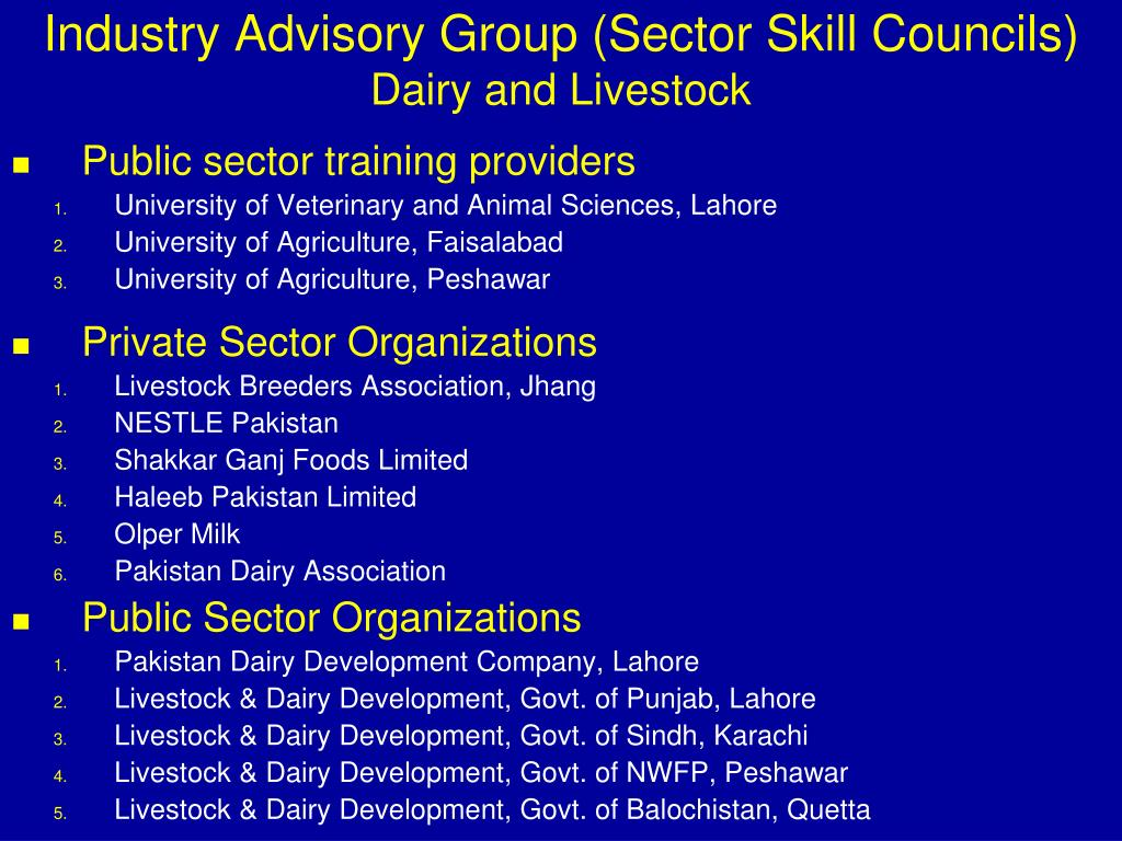 """PPT - """"Skilling Pakistan"""" National Skill Strategy PowerPoint"""