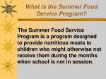 what is the summer food service program