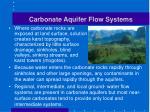 carbonate aquifer flow systems