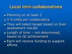 local mini collaboratives
