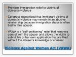 violence against women act vawa
