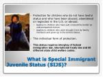 what is special immigrant juvenile status sijs