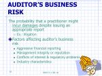 auditor s business risk