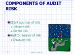 components of audit risk