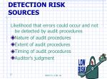 detection risk sources