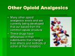 other opioid analgesics
