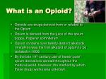 what is an opioid