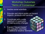 workshop outcomes items of consensus