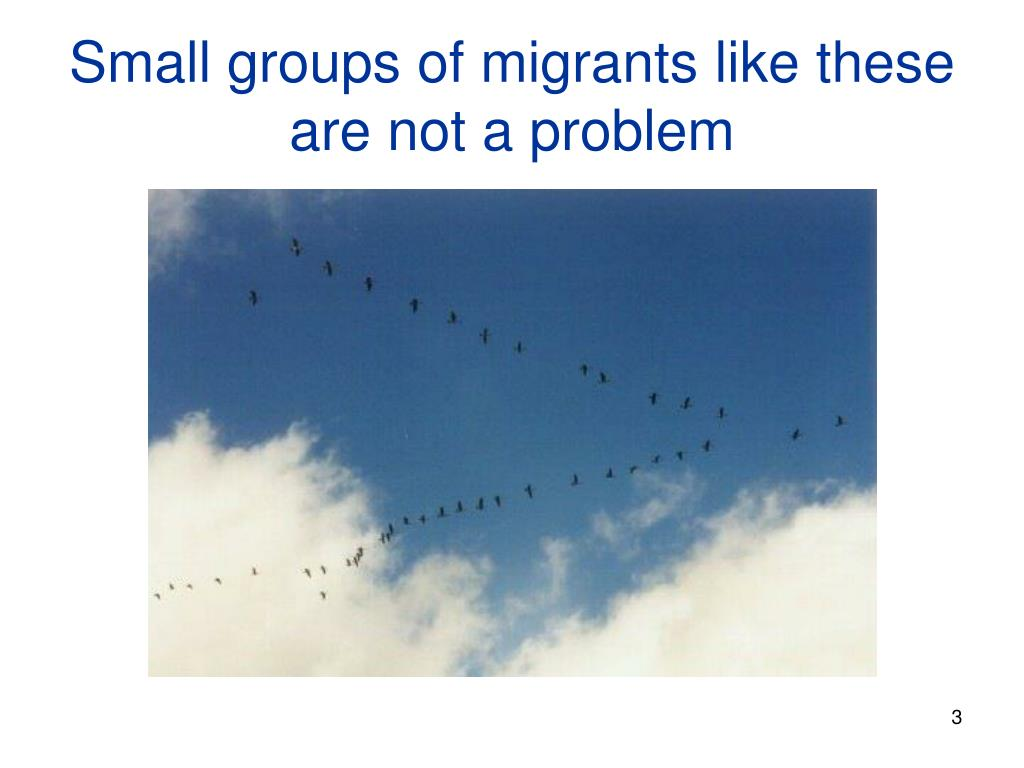 Small groups of migrants like these are not a problem