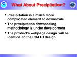 what about precipitation