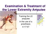 examination treatment of the lower extremity amputee