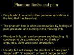 phantom limbs and pain