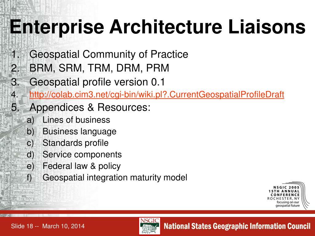 Enterprise Architecture Liaisons