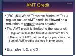 amt credit