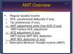 amt overview