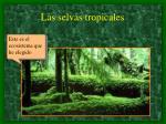 las selvas tropicales