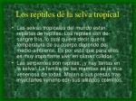 los reptiles de la selva tropical