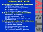 collaborative tb hiv activities