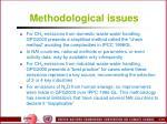 methodological issues2