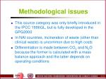methodological issues3