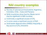 nai country examples