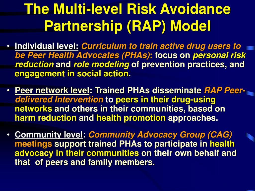 The Multi-level Risk Avoidance Partnership (RAP) Model