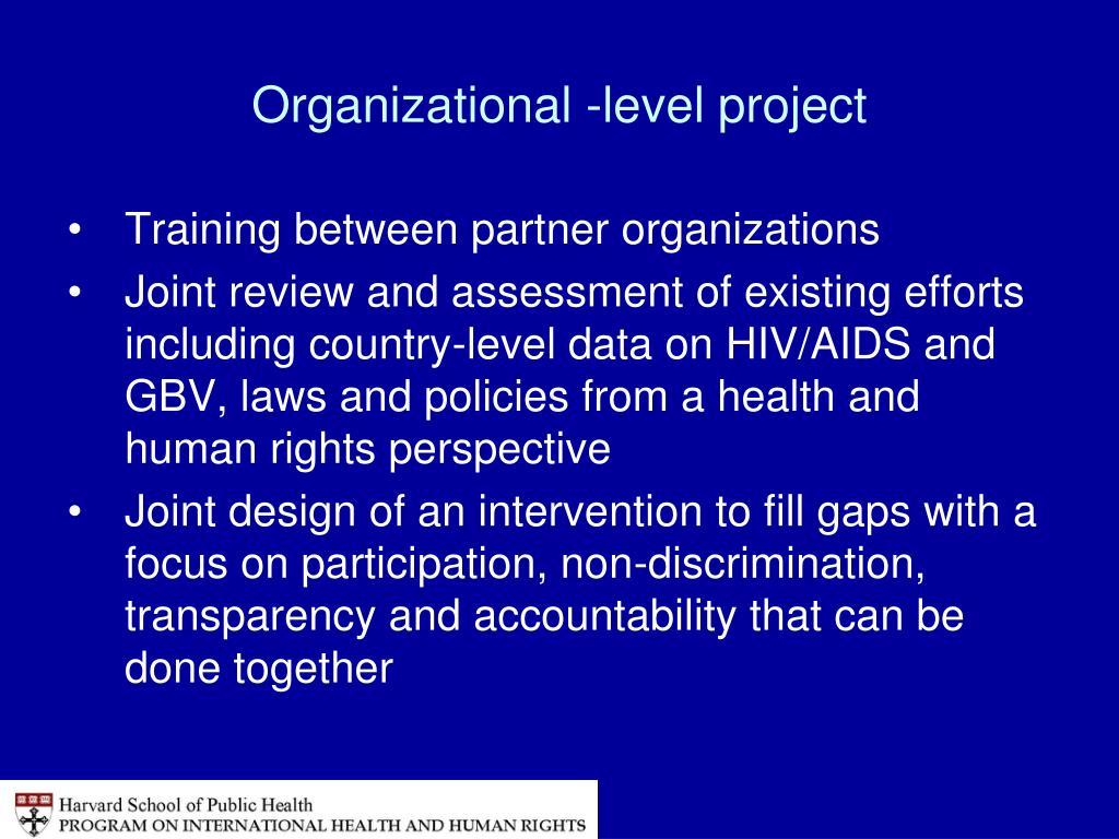 Organizational -level project