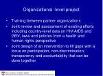 organizational level project