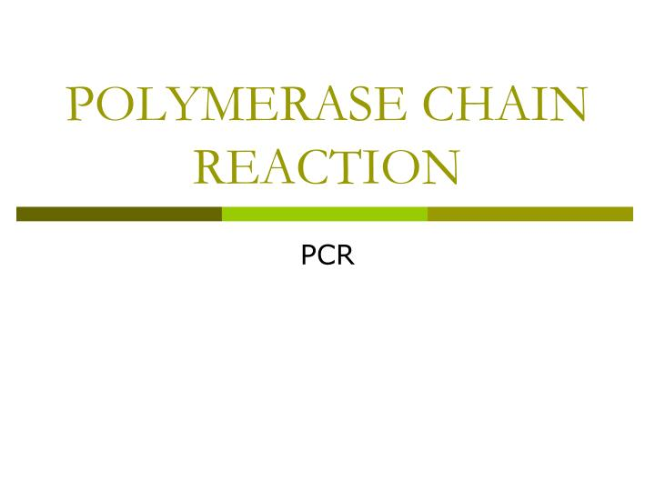polymerase chain reaction n.