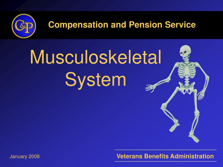 musculoskeletal system n.