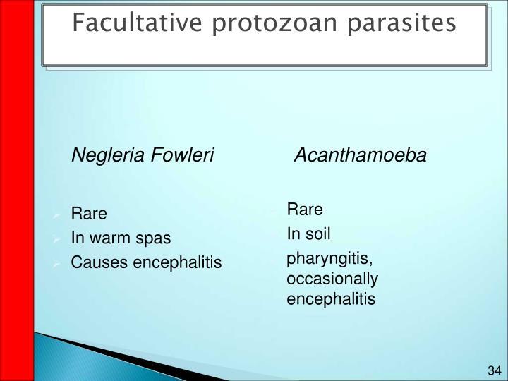 Facultative protozoan parasites