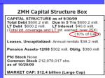 zmh capital structure box