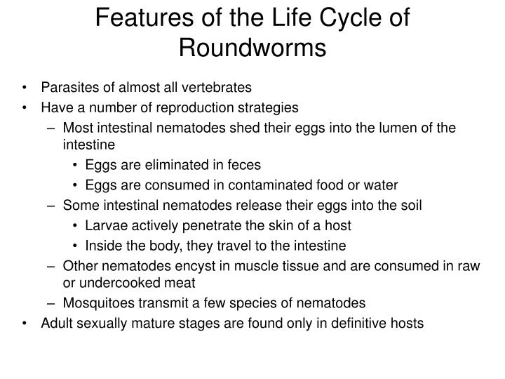 Features of the Life Cycle of Roundworms