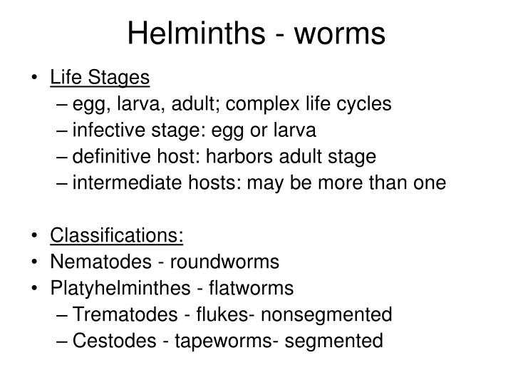 Helminths - worms