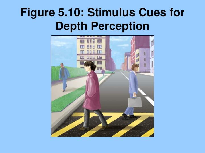 Figure 5.10: Stimulus Cues for