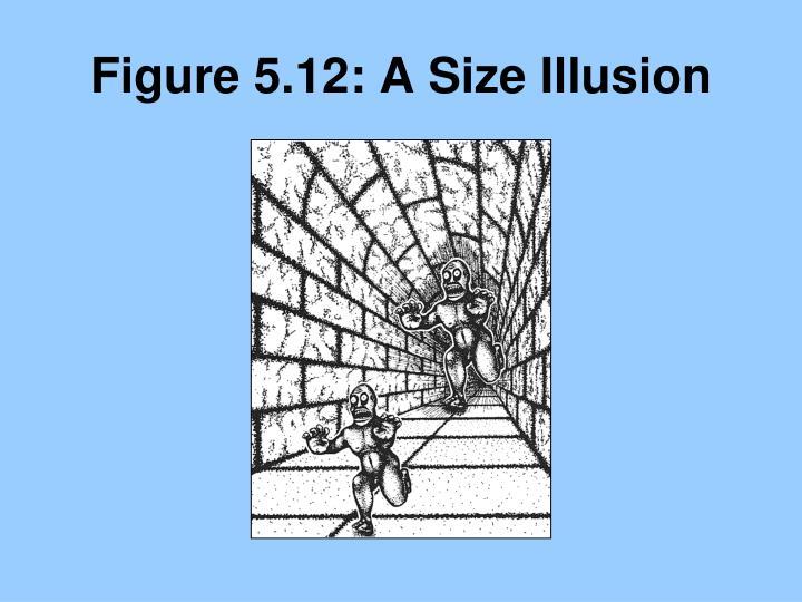 Figure 5.12: A Size Illusion