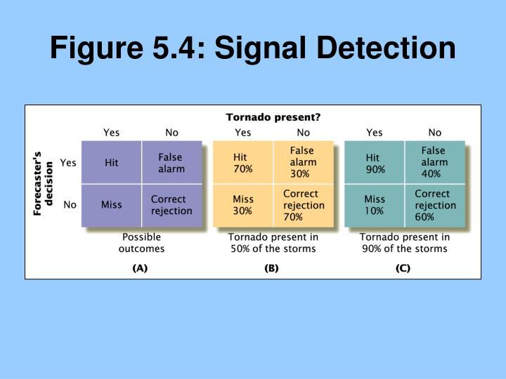 Figure 5.4: Signal Detection