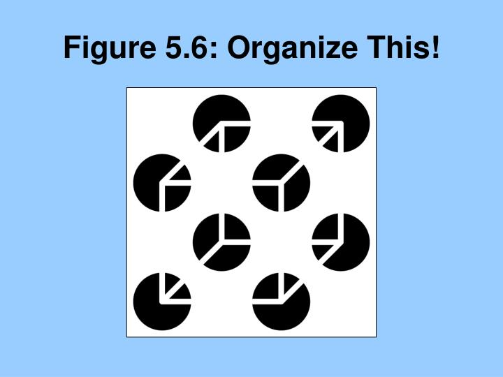 Figure 5.6: Organize This!