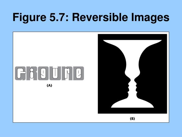 Figure 5.7: Reversible Images