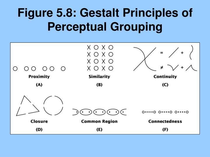 Figure 5.8: Gestalt Principles of Perceptual Grouping