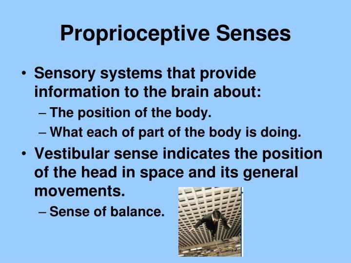 Proprioceptive Senses