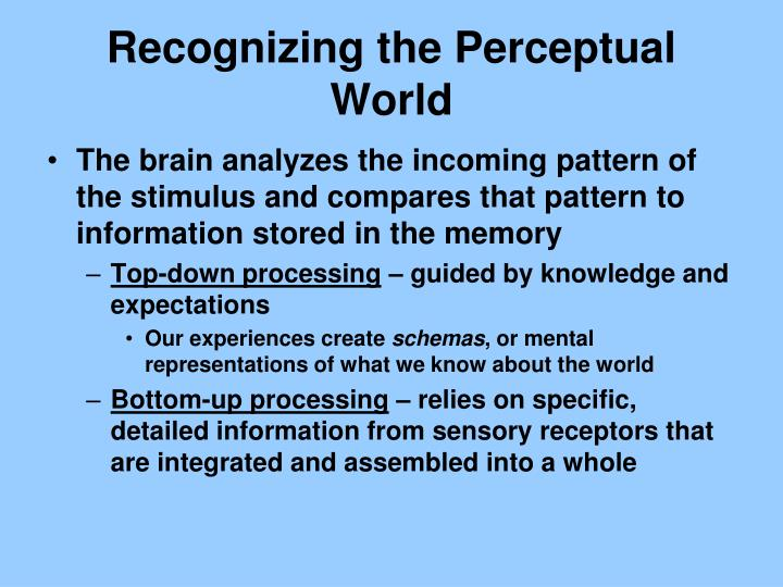 Recognizing the Perceptual World