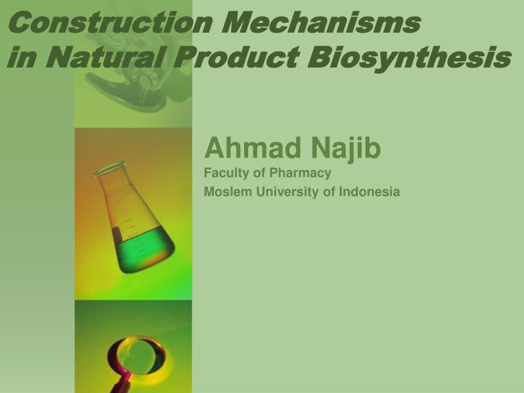 Construction Mechanisms