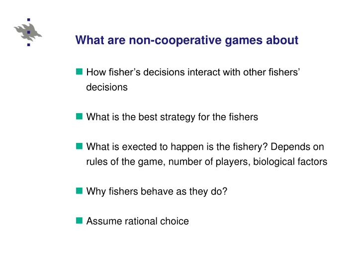 What are non-cooperative games about