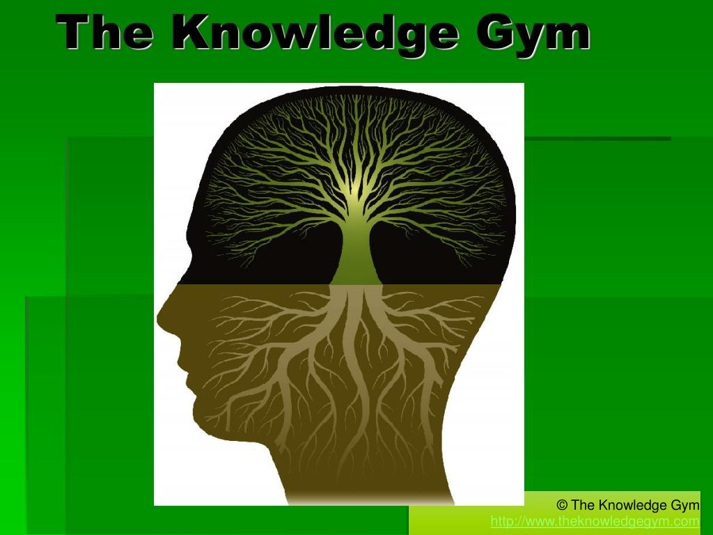 the knowledge gym l.