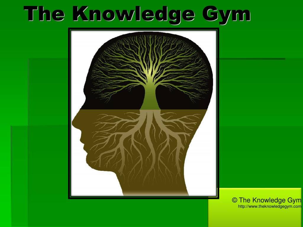 the knowledge gym
